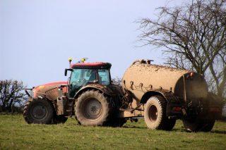 Así regulará a Xunta a xestión dos xurros gandeiros nos próximos anos