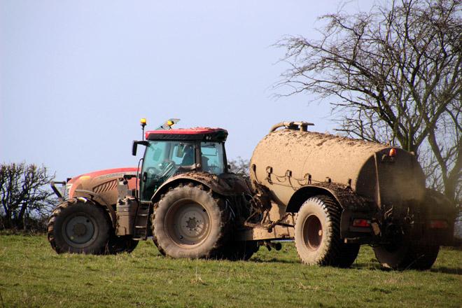 ¿Por qué o cambio na xestión do xurro que propón o Goberno vai contra as ganderías de vacún de leite?