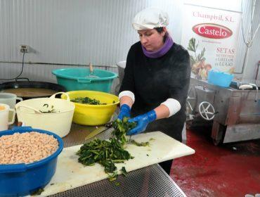 Champivil-Castelo incrementa un 50% a súa produción de caldo galego