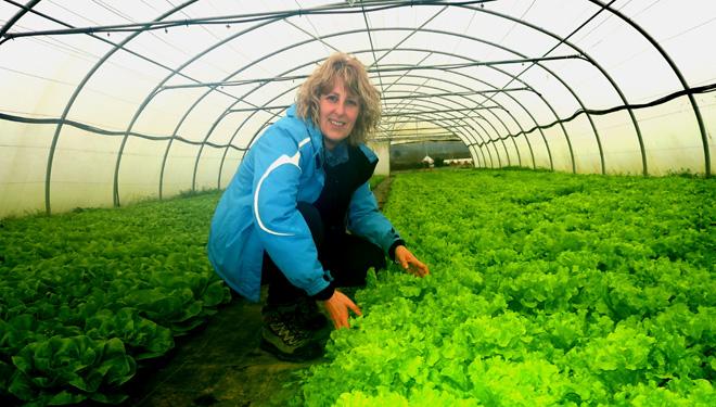 Hortas de Galicia, medrar a modo para obter o mellor sabor