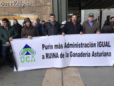 Decreto de xurros: En Galicia a Xunta pide tranquilidade mentres que en Asturias maniféstanse os gandeiros