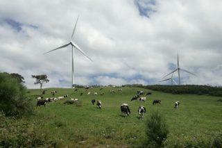 Fenosa esíxelle 54.000 euros a un gandeiro de Portomarín por mellorar a potencia eléctrica