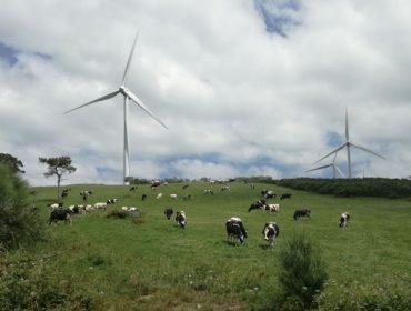 """O SLG alega contra o parque eólico de Ordes por """"usurpar"""" máis de 6.000 hectáreas ás granxas"""