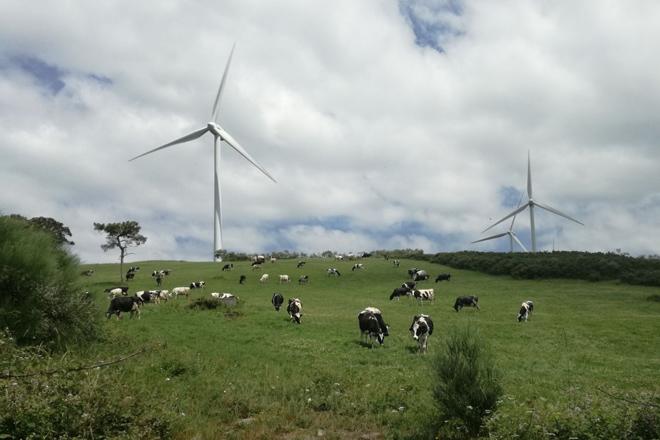 Alertan de que a instalación de parques eólicos en Ordes afectará a máis de 500 explotacións agrarias