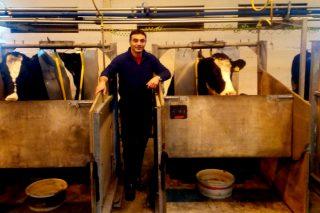 """""""Soamente o 28% do nitróxeno inxerido pola vaca acaba no leite, e podemos chegar ao 40%"""""""
