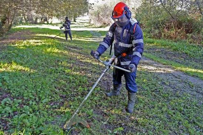 ¿A que distancia hay que limpiar alrededor de las casas y de los terrenos para prevenir incendios?