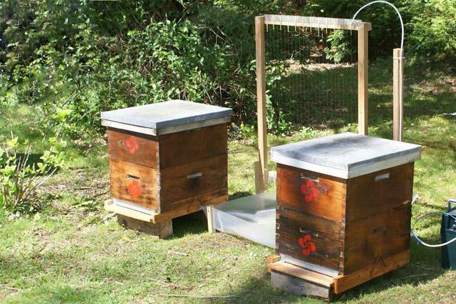 Charla sobre o uso da arpa eléctrica contra a vespa velutina