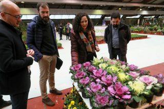 O sector da planta ornamental en Galicia factura case 40 millóns de euros e exporta o 20% da produción