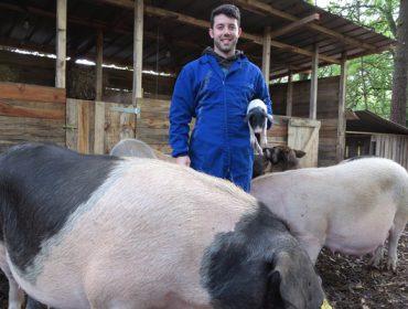 Fraga do Coto, de monte lleno de maleza a paraíso para cerdos celtas