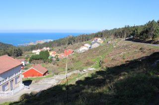 O sistema de rozas bonificadas no monte prevé activarse esta primavera