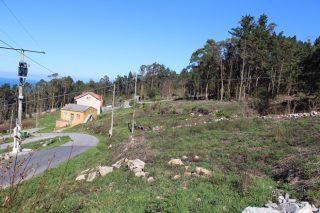 A Xunta asinará convenios cos concellos para rozar a biomasa nas proximidades das vivendas