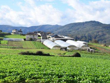 Xornada de formación sobre a PAC para agricultores e gandeiros