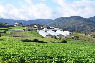 Xornada sobre retos e oportunidades para a produción de horta na Mariña