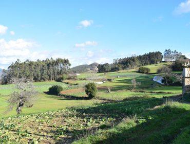 Premio de 2.000 euros á mellor idea de desenvolvemento rural