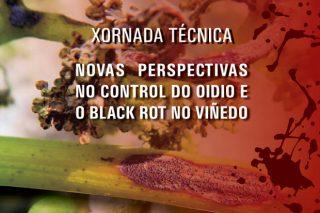 """Jornada sobre """"Nuevas perspectivas en el control del oídio y el black rot en el viñedo"""""""