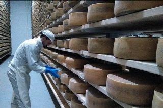 Galmesano, un queso 'top' singular en Galicia