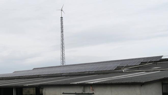 Placas solares y aerogenerador de la explotación.