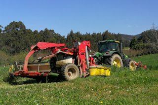 Primeiras analíticas da calidade da herba deste ano
