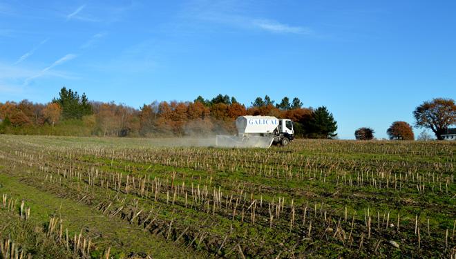 Consejos de Galical para lograr una buena cosecha de maíz: la importancia del encalado