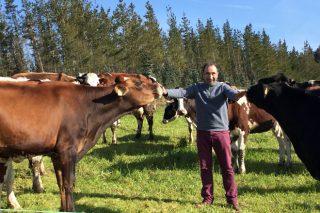 Gandería A Zanca: Un exemplo de produción de leite a baixo custo