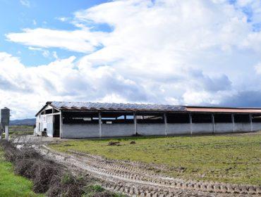 As granxas con enerxías renovables por fin poderán vender os excedentes de electricidade