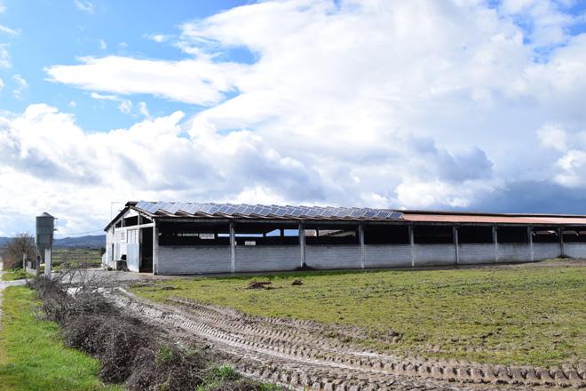 La derogación del 'impuesto al sol' despierta el interés del agro por las energías renovables