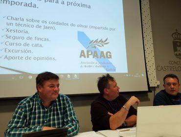 Los productores de aceite de oliva de Galicia avanzan en su profesionalización