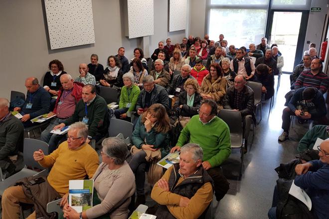 Os produtores de aceite de oliva de Galicia avanzan na súa profesionalización