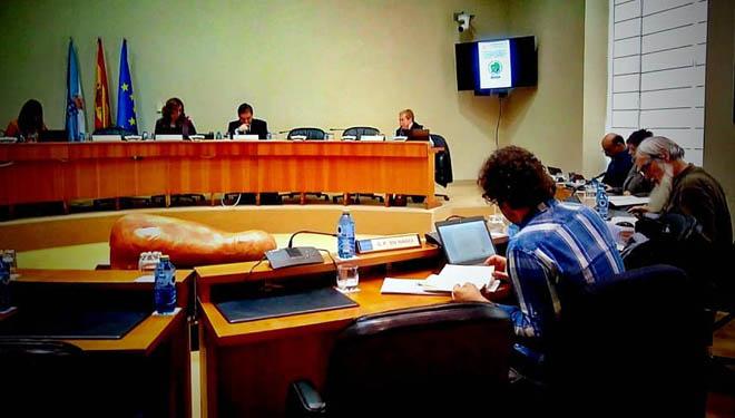 Comparecencia de Marta Rodríguez, de Ovica, na comisión de estudo dos lumes do Parlamento.