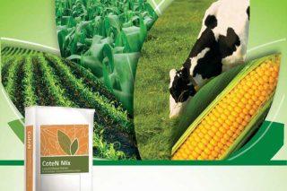 'CoteN Mix', fertilizantes de liberación controlada para o millo forraxeiro