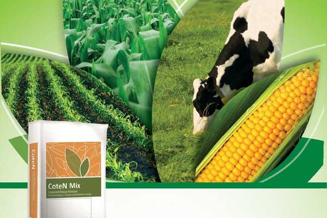 CoteN™ Mix. fertilizantes de liberación controlada para el maíz forrajero