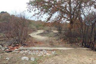 Camiño coas marxes queimadas polo que pasa o rabaño de Marta.