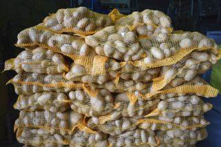 O Sindicato Labrego critica os baixos prezos para os produtores de pataca da Limia na canle Mercaproximidade