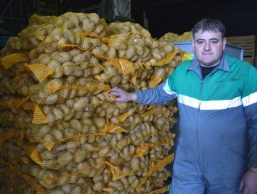 """""""Se chega a couza guatemalteca á Limia sería unha desfeita para esta comarca"""""""