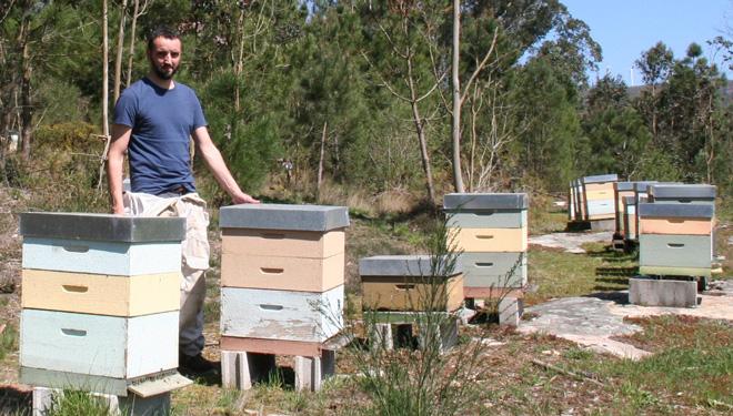 """""""Hai moito futuro no rural e na apicultura para a xente nova"""""""
