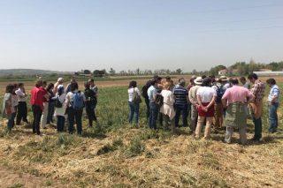 ICL participa en la reunión de la Red de Uso Eficiente del Nitrógeno en Agricultura