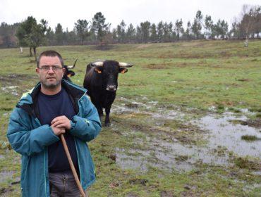 """""""Las vacas de raza Caldelá son auténticos diamantes en bruto"""""""