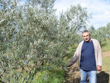 Manuel Mondelo: O primeiro produtor de aceite de oliva 100% galego