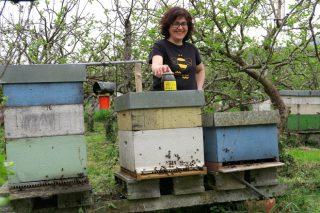 O Trobo, la miel con historia