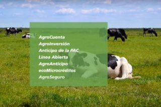 Préstamos de Caixabank: Un financiamento para cada necesidade do sector agrario