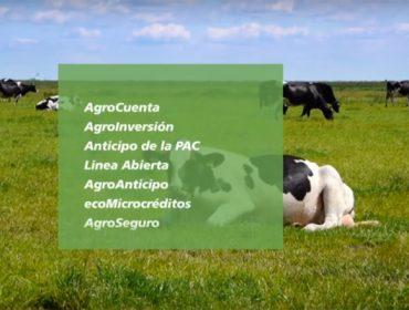 Préstamos de Caixabank: Una financiación para cada necesidad del sector agrario