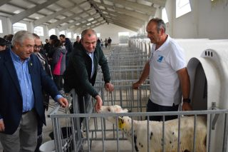 30 ganaderos lucenses, primeros beneficiarios del Centro de Recría de la Diputación de Lugo