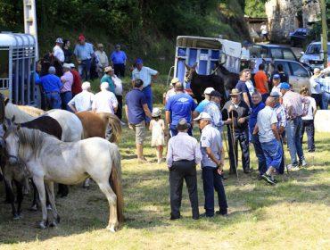 A Espiñeira, no concello de Foz, celebra este domingo a súa tradicional feira cabalar
