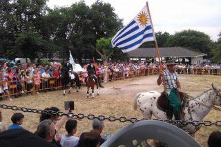 O Concello do Corgo organiza o domingo 24 a tradicional Feira do Cabalo de Adai
