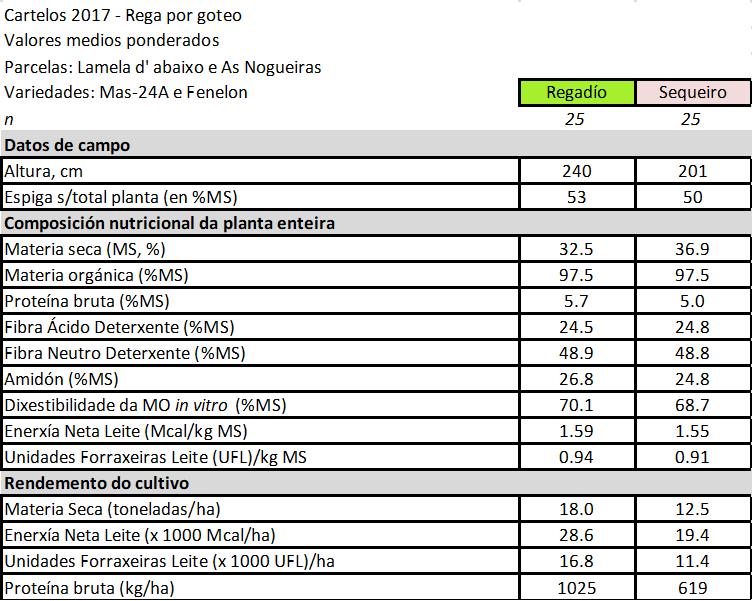 REGA_MILLO_GOTEO_CIAM_3
