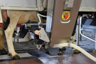 Xornada técnica sobre o robot de muxido en Lalín