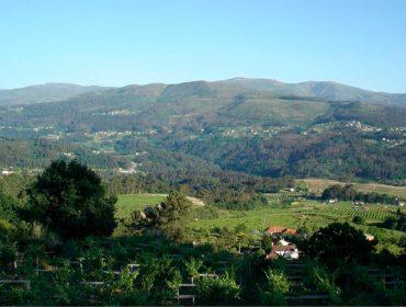 Valtea, a paixón polo albariño ó estilo borgoñón