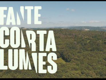 """La Xunta reactiva la campaña """"Faite cortalumes""""' para concienciar a la sociedad contra los incendios forestales"""