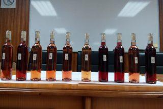 La EVEGA estudia el potencial de las variedades autóctonas para elaborar vinos rosados