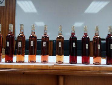 A EVEGA estuda o potencial das variedades autóctonas para elaborar viños rosados